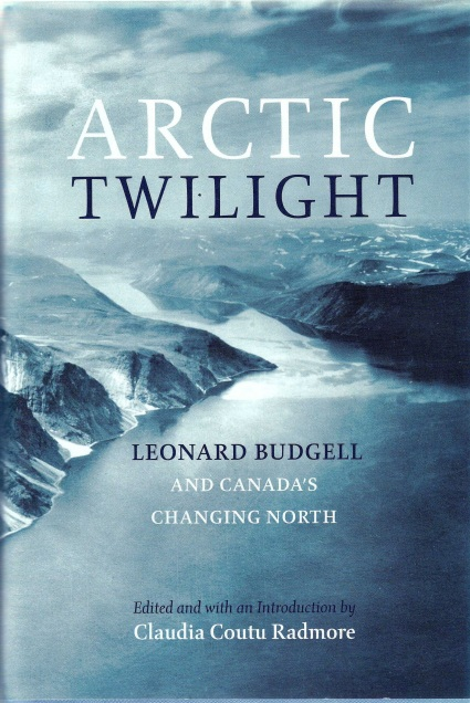 arctic twilight cover